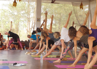 Vinyasa Yoga Training