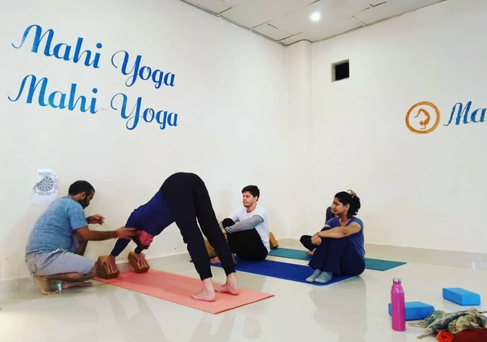 100 Hour Yoga Teacher Training Course in India