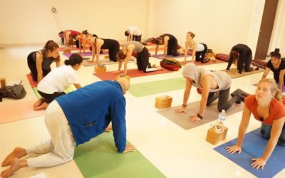 300 Hour Yoga Teacher Training Course in India